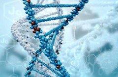 基因突变与自闭症相关的疾病