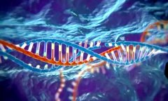 基因研究揭示犹太人散居